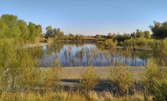City of Woodland Stormwater Retention Pond